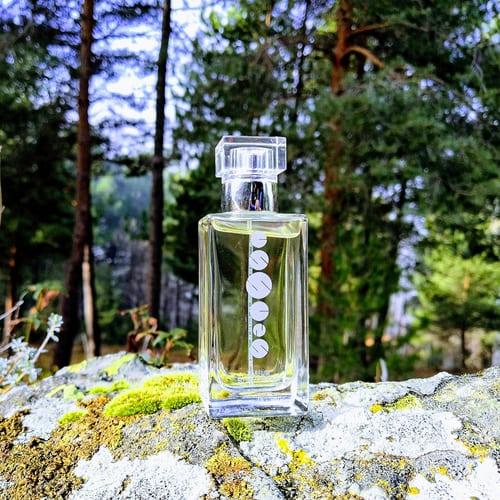 Perfume Essens M010